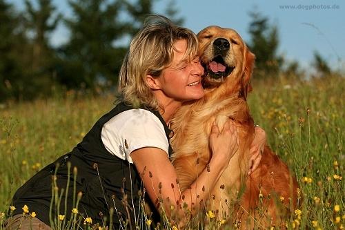 assistenzhunde_therapiehunde
